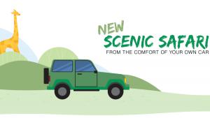 new scenic safari illustration for Toronto zoo